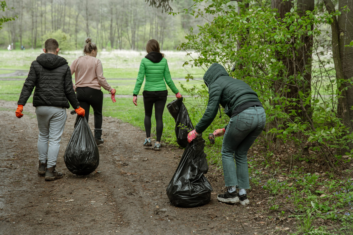 clean-the-environment